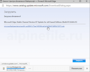microsoft-edge-manual-update-screenshot-4