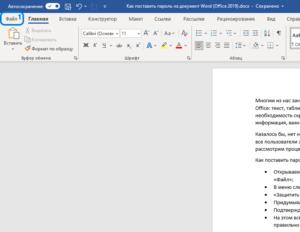 microsoft-office-2019-365-word-excel-password-screenshot-1