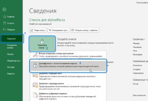 microsoft-office-2019-365-word-excel-password-screenshot-6
