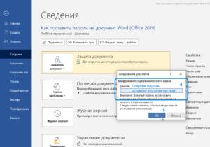 microsoft-office-2019-365-word-excel-password-screenshot-8