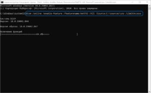 offline-install-net-framework-windows-10-dism-screenshot-2