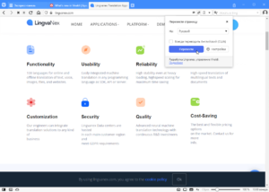 vivaldi-browser-4-translation