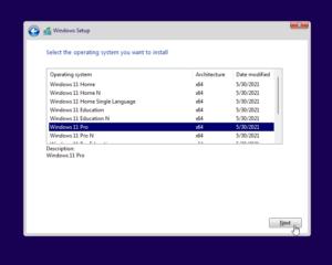 windows-11-installation-without-tpm-secureboot-screenshot-13
