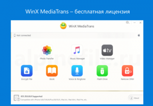 winx-mediatrans-free-license